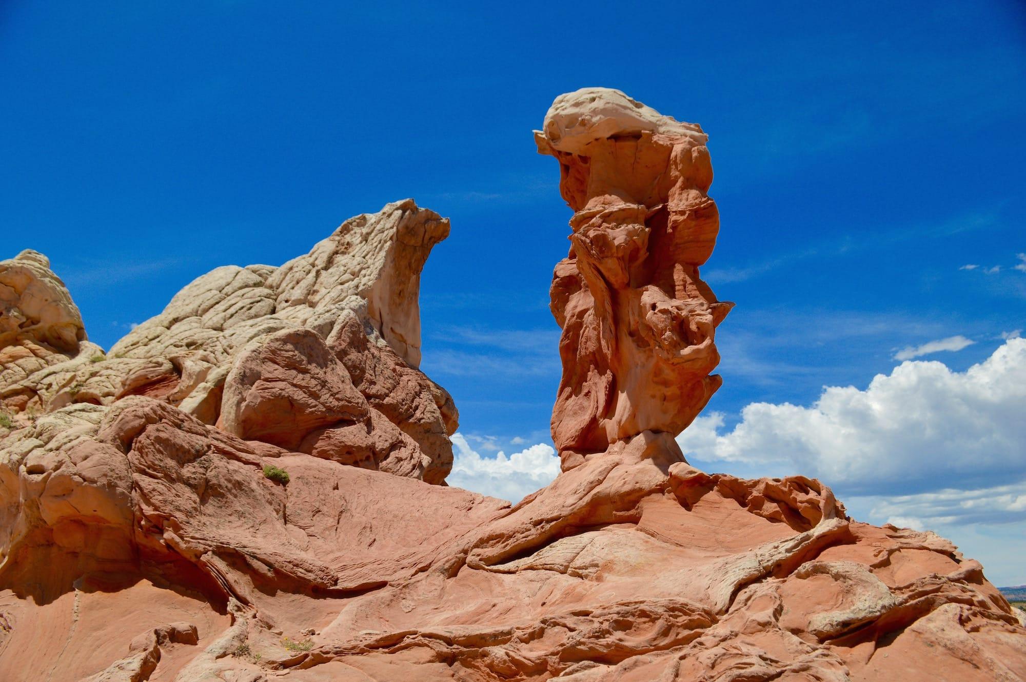 Strange sandstone at White Pocket