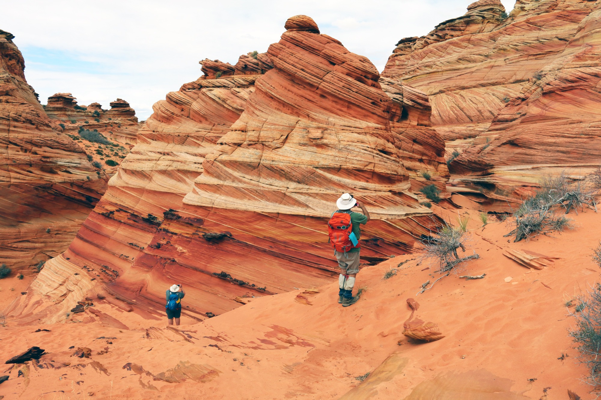 Photographers tour South Coyote Buttes