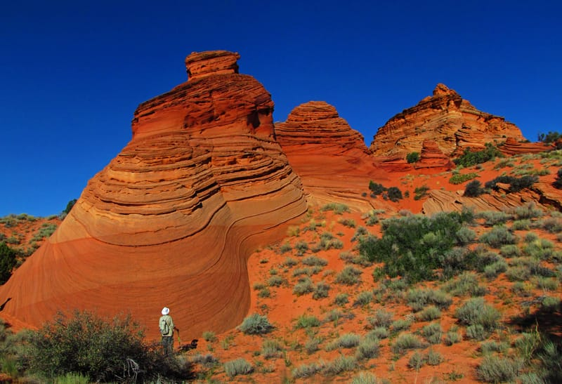 Sandstone buttes at Cottonwood Cove