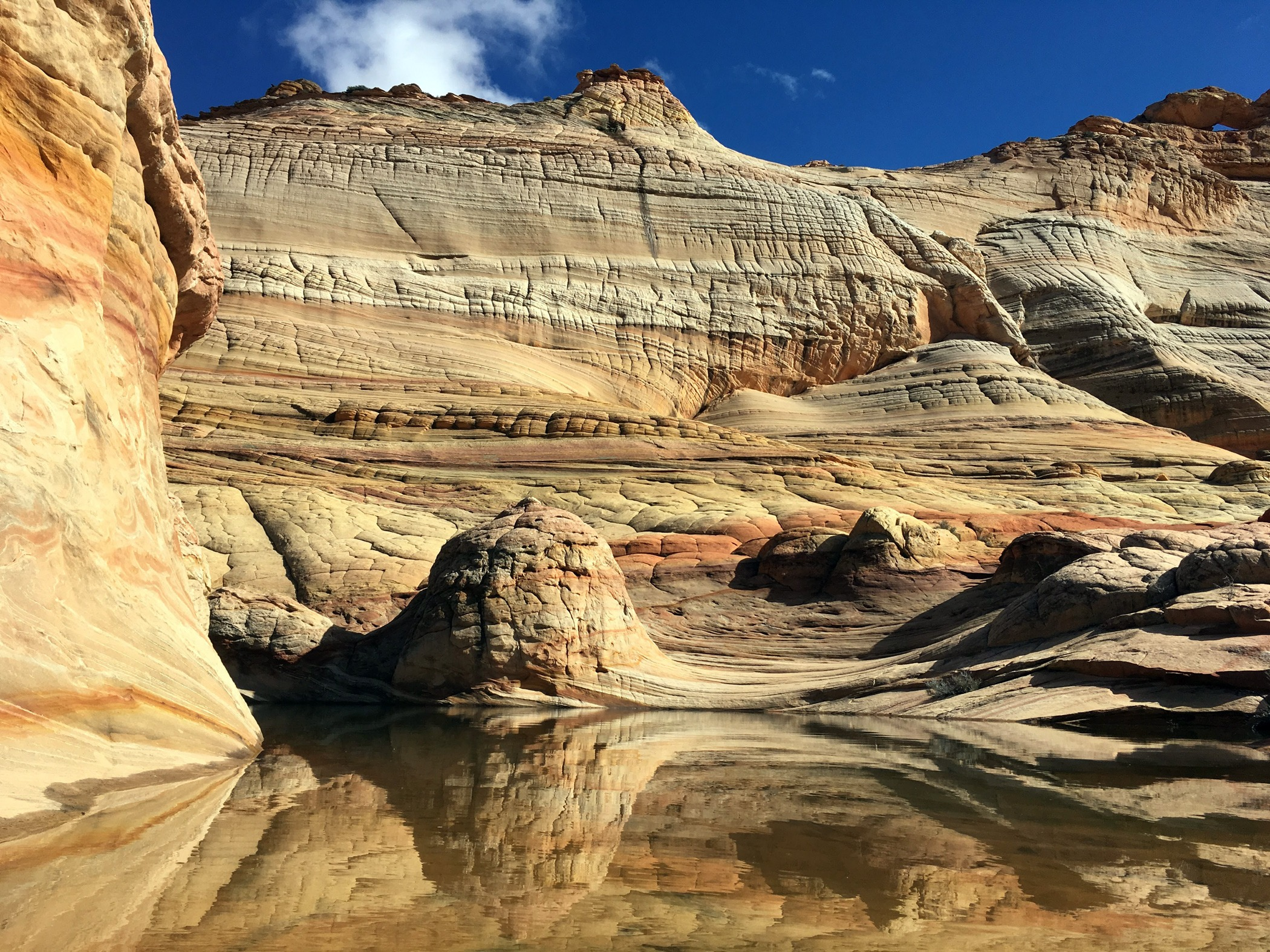 North Coyote Buttes reflection pool